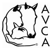 Dr Katherine Lord DC,  CAC -Certified Animal Chiropractor